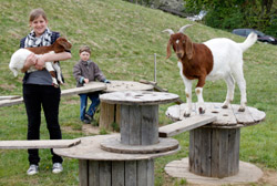 1. Platz: NABU-Ortsverein Eutingen im Gäu